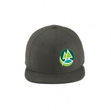 Graphite Original Fit Diamond Era Flat Bill Snapback Cap