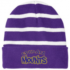 Purple/White Striped Beanie